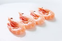 Row of shrimps Royalty Free Stock Photo
