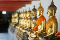 Row of sitting Buddha Stock Photos