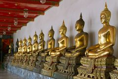 Row of Sitting Buddha Stock Photo