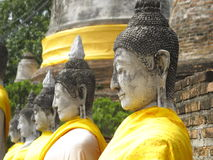 Row of Sitting Buddha Statue. Buddha statues covered in yellow cloth sitting in a row in a ruined temple Stock Photo