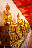 Row of sitting buddha Stock Photography