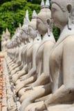 Row of sitting Buddha stone statues in Ayutthaya historical park, Thailand royalty free stock photos