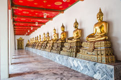 Row sitting golden buddha statue Royalty Free Stock Images