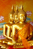 Row of sitting golden Buddha statutes Stock Images