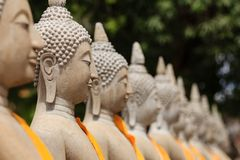 Row of sitting stone Buddha sculptures in yellow robes in Ayutthaya, Thailand. Taken in Ayutthaya historical park containing ancient ruins of Siam Empire stock photos