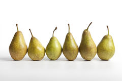 Row of six Pears Triomphe de Vienne Stock Images