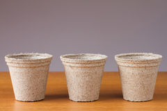 Row of small peat flowerpots Stock Images