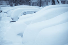 Row of snow-covered cars Stock Photography