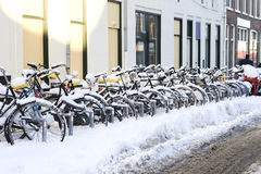 A row of snowcovered bikes Royalty Free Stock Images