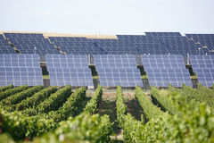 Row of solar panels Royalty Free Stock Photos