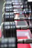 Row of spinlock dumbbels in special rack Royalty Free Stock Image
