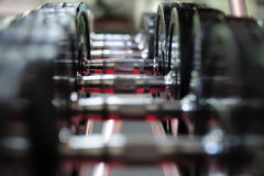 Row of spinlock dumbbels in special rack Royalty Free Stock Photography