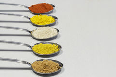 Row of spoons containing different spices powder. Clear space at right Stock Photography