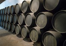 Row of stacked wooden wine barrels for sherry aging. Row of stacked oak casks or barrels along wall of winery for aging sherry or port Royalty Free Stock Images