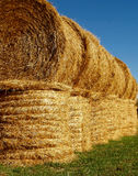 A row of stacked Round Bales. A row of Round Bales on a farm near Birtle, Manitoba, Canada Stock Photography