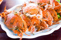 Row of steamed blue crab - seafood Stock Photography