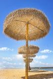 Row of straw umbrellas on yellow sand Stock Photos