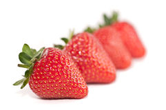 Row of strawberries. A row of fresh, vibrant looking strawberries isolated on a white background Royalty Free Stock Photos