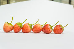Row of Strawberries berry. On white background Stock Photo
