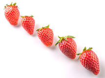 Row Of Strawberries Fruits II Royalty Free Stock Photography