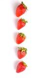 Row Of Strawberries Fruits III Royalty Free Stock Image