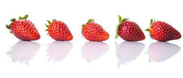 Row Of Strawberries Fruits VI. Row of strawberry fruits over white background Royalty Free Stock Photos