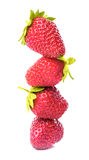 A row of strawberry Royalty Free Stock Photos