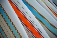 Row of Striped Surfboards Stock Photography