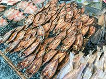 Row Sun-dried salted fish. Close up of row Sun-dried salted fish Stock Images
