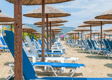 Row of sunbeds and towels at a beach resort Stock Images