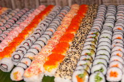 Row of sushi. Delicious Japanese food Royalty Free Stock Photos