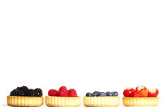 Row of tartlets with wild berries Royalty Free Stock Image