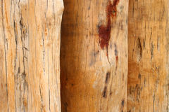 Row of teak wood timber Stock Photos