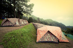 Row of tents for camping in national park Stock Image