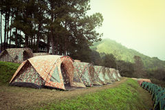 Row of tents for camping in national park Royalty Free Stock Images
