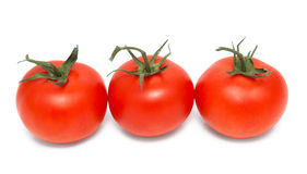 Row of three red tomatoes Royalty Free Stock Photography