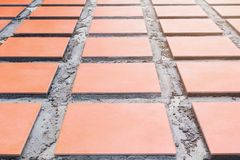 Row tile ceramic orange on floor install with cement in work construction renovation outdoor home.  Royalty Free Stock Photos