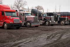 Row of Tractor Trailers. A row of tractor trailers in line for a load Royalty Free Stock Photo