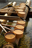 Row of purification dipper Royalty Free Stock Photo