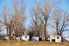 Row of Trailer Homes Under Tall Trees Royalty Free Stock Photo
