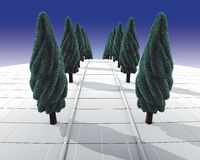 Row of trees Royalty Free Stock Photo