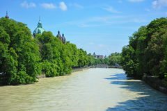 Row of trees along Isar river in Munich Royalty Free Stock Photography
