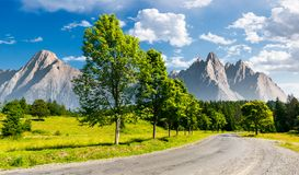 Row of trees along the road in to the mountains. Composite mountainous landscape with rocky peaks in the distance. beautiful summer nature with gorgeous sky royalty free stock photography