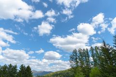 Row of trees on foreground mountains with vast blue sky on background royalty free stock photography