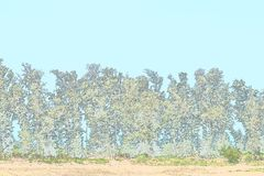 Row of Trees - Green Environment - Illustration Background Stock Images