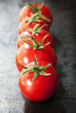 Row of Truss Tomatoes on Slate Royalty Free Stock Photo
