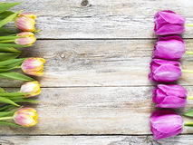 Row of tulips on wooden background with space for message. Mother's Day background. Top view Royalty Free Stock Images