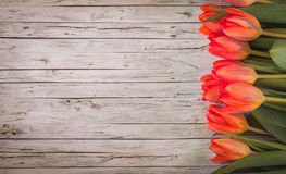 Row of tulips on wooden background with space for message. Top view Stock Photos