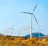 A row of turbines of windmills at Jeju Royalty Free Stock Image