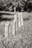 A Row of Unmarked Small Child Headstones Vertical Stock Photos